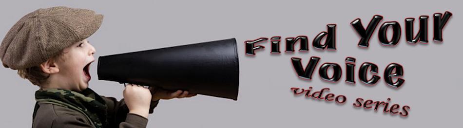 KC Find Voice Slider